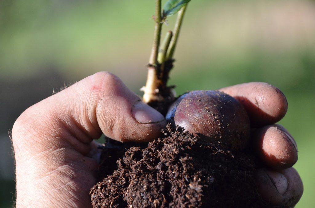 formation agroécologie